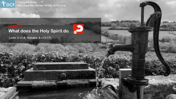 What does the Holy Spirit do?